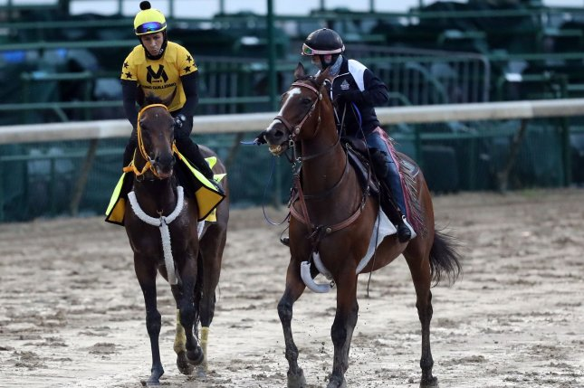 Kentucky Derby hopeful King Guillermo (L) walks a muddy track during a workout Tuesday before he was scratched two days later from the 146th running of the Kentucky Derby at Churchill Downs in Louisville, Ky. Photo by John Sommers II/UPI