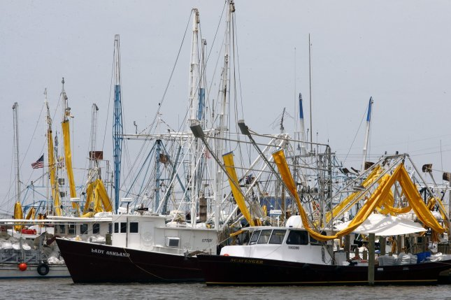 Shrimp boats outfitted with oil collecting booms are docked in a harbor, near Grand Isle, Louisiana June 30, 2010, as Hurricane Alex made conditions in the Gulf of Mexico to rough to work. Oil has been leaking into the gulf since April when a massive explosion on the BP oil rig Deepwater Horizon, creating the worse spill in U.S. history. UPI/A.J. Sisco