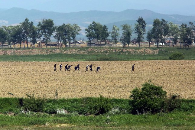 North Koreans work in the fields near the North Korean city Sinuiju, across the Yalu River from Dandong, China. File Photo by Stephen Shaver/UPI