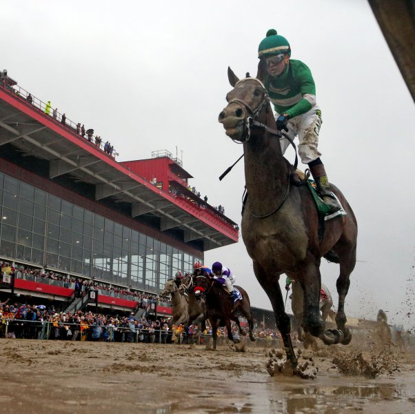 Exaggerator, ridden by Kent Desormeaux, wins the 141st running of the Preakness Stakes at Pimlico Race Course in Baltimore on Saturday. Photo by Mark Abraham/UPI