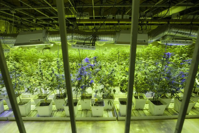The Bureau of Reclamation's ruling will not affect Colorado as much because the state only allows indoor pot farms. UPI/Gary C. Caskey
