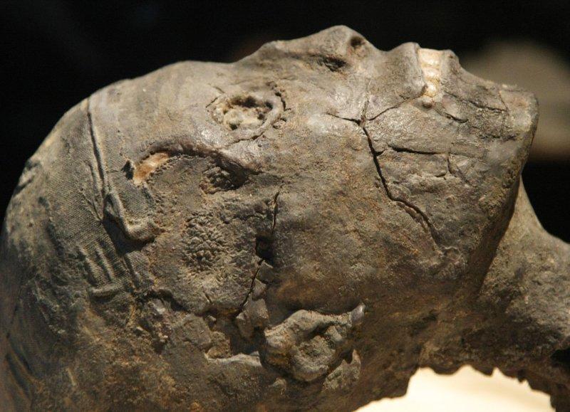 Mummy study: Egyptians used hair gel
