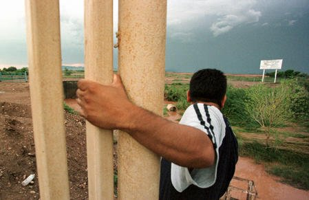A coyote hangs onto the end of the fence marking the US-Mexico border while he searches for signs of the US Border Patrol near Douglas, Arizona, August 8, 2001. rlw/Jack Kurtz/File UPI