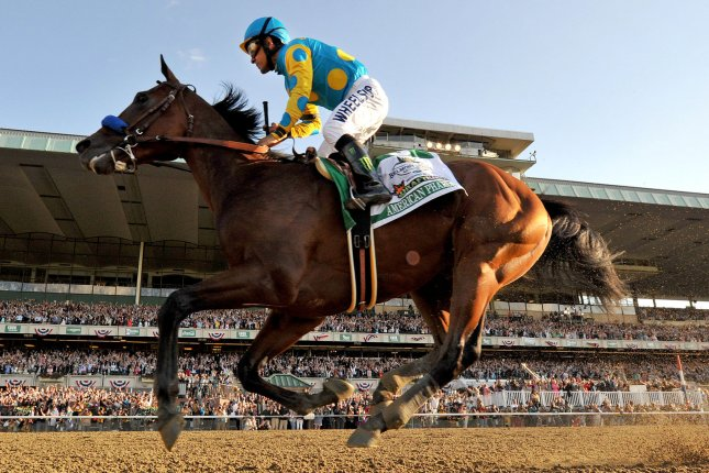 American Pharoah, ridden by Victor Espinosa wins the Belmont Stakes to take horse racing's triple crown on June 6, 2015 at Belmont Park in Elmont, New York. American Pharoah is the first house in 37 years to win the triple crown. Photo by Kevin Dietsch/UPI