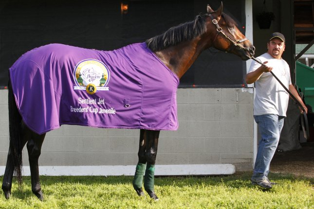 Kentucky Derby hopeful Nyquist is lead back to the barn by his groom after a morning workout on the track at Churchill Downs in Louisville, Kentucky, May 2, 2016. Trainers are preparing their horses for the 142nd running of the Kentucky Derby to be held at Churchill Downs on May 7. Photo by John Sommers II/UPI