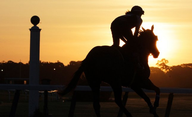 A horse goes for a run in the early morning on the Monday before the 146th Belmont Stakes in Elmont New York on June 2, 2014. California Chrome is trying to become the first horse since Affirmed in 1978 to win the Triple Crown. UPI/John Angelillo