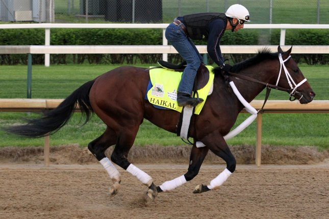 Kentucky Derby hopeful Haikal gallops on the track during early morning training Wednesday to prepare for the Kentucky Derby at Churchill Downs in Louisville on Saturday. The horse is questionable to start. Photo by John Sommers II/UPI