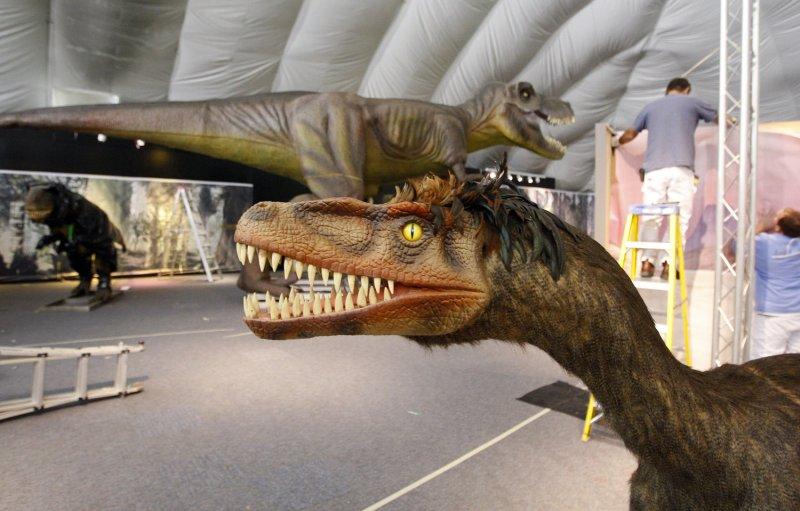 an analysis of the first found of dinosaur bones Maharashtra: dinosaur remains found, geologists discovered dinosaur fossils, maharashtra news, a geologist, ak srivastava said here saturday that near.