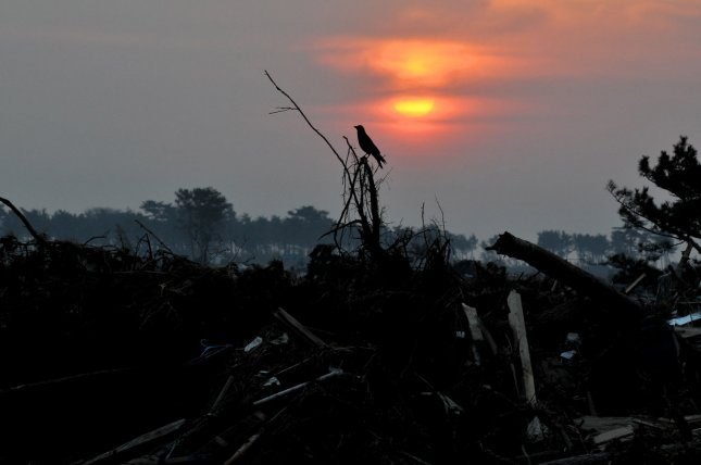 Destruction is seen as the sun rises in Iwanuma, Miyagi prefecture, Japan, on April 15, 2011. A massive earthquake and ensuing tsunami on March 11 destroyed homes, killed thousands and caused a nuclear disaster. UPI/Keizo Mori