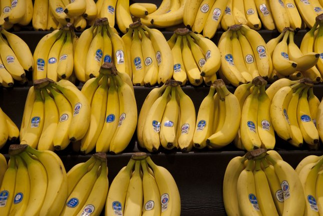 Bananas can be a good source of fiber. File Photo by Gary C. Caskey/UPI