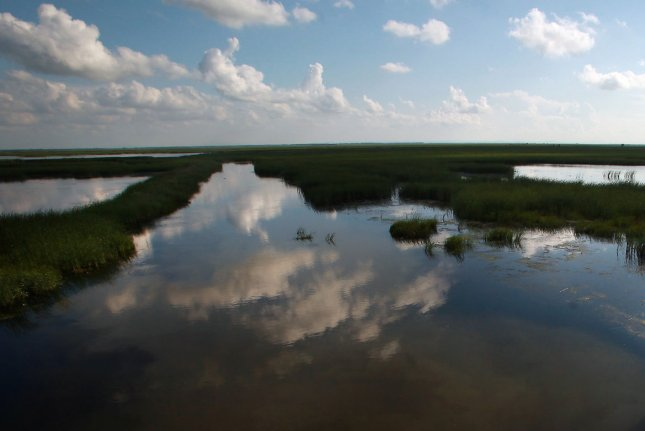 Wetlands offer protection from storm surges and flooding brought on by hurricanes and other major storms. File photo by Stephen Shaver/UPI