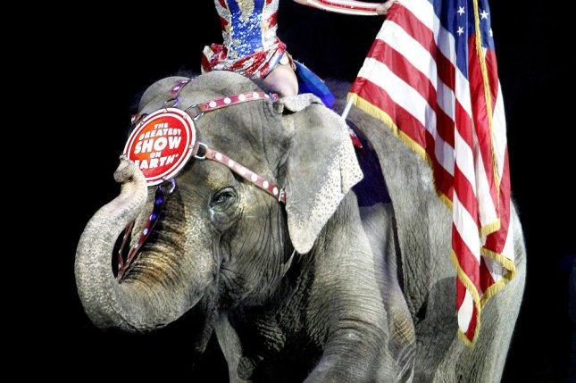 The Ringling Bros. will eliminate the use of Asian elephants during their act. UPI/A.J. Sisco