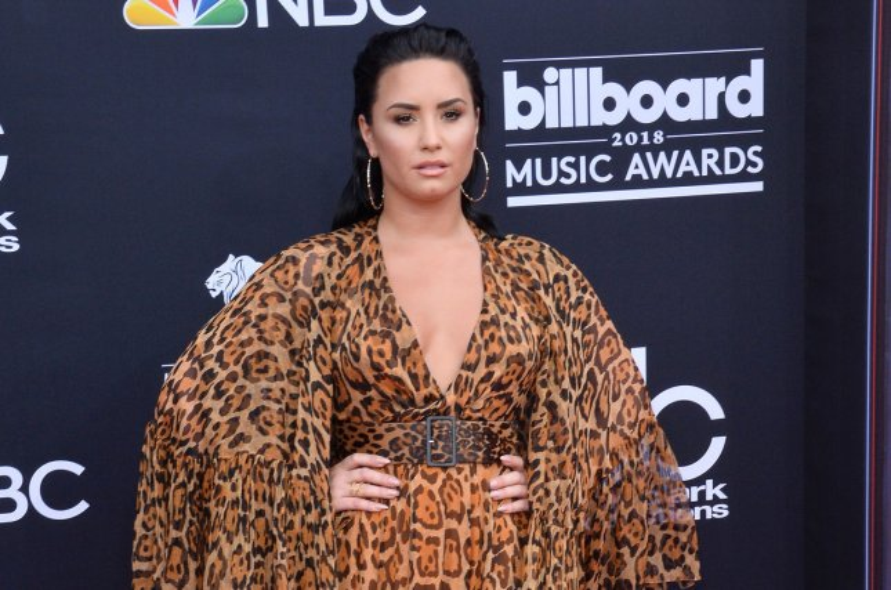 Demi Lovato: 'I will keep fighting'