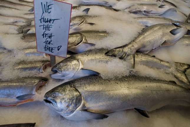 Freshly caught salmon wait to be purchased from Pike Place Fish Company in Seattle on August 17, 2007. Tens of thousands turned out to join in on the 100th Anniversary celebration of Pike Place Market. (UPI Photo/Jim Bryant)
