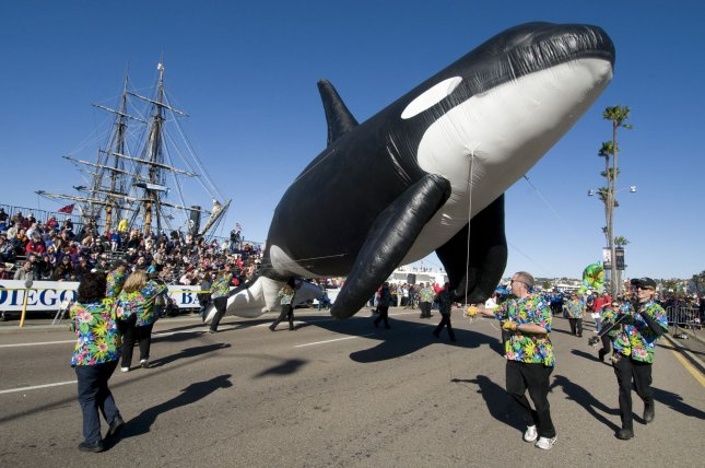 Sea World's Orca the Whale balloon is seen at the annual Port of San Diego Big Bay Balloon Parade, held in San Diego on December 30, 2010. UPI Photo/Earl S. Cryer)