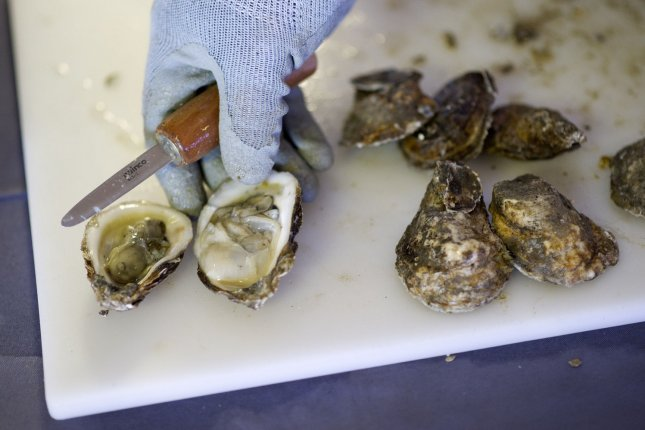 Among seafood and shellfish, mollusk species -- which include oysters, pictured -- were shown to have the highest level of microplastics in them, according to an analysis of studies from the last half-decade. File Photo by Kevin Dietsch/UPI