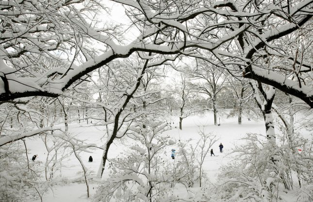 People walk through Central Park among the snow veiled trees after a major storm dumped around 15 inches of snow on January 27, 2011 in New York City. The storm caused suspension of may city bus lines and closed all public schools as this month became the snowiest January in New York City history. UPI /Monika Graff