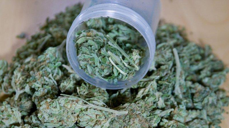Medical Marijuana is now available in Washington, D.C. File / UPI /Jim Bryant