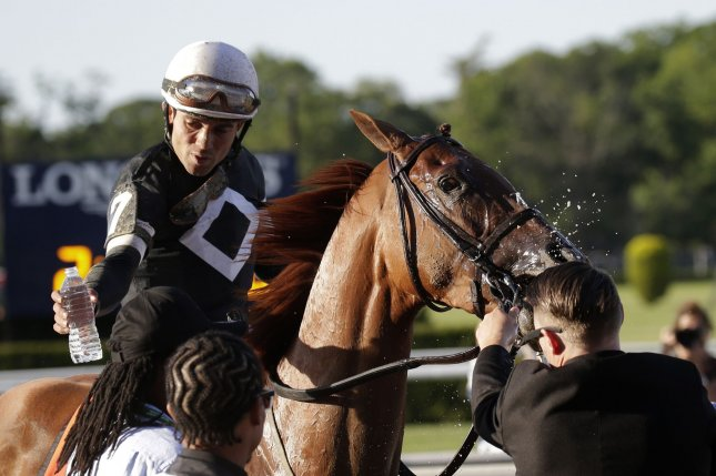 Sir Winston and jockey Joel Rosario celebrate after winning the 151st running of the Belmont Stakes at Belmont Park in Elmont, N.Y., last year. File Photo by John Angelillo/UPI
