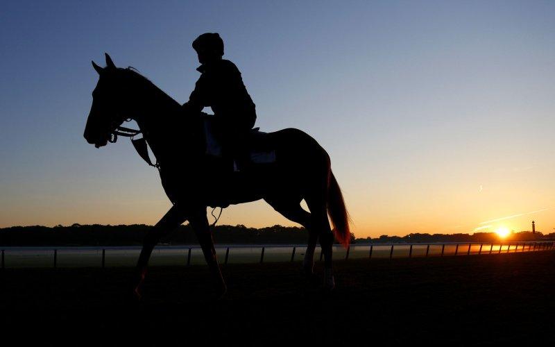 Flying is much easier on horses than highway travel. UPI/John Angelillo