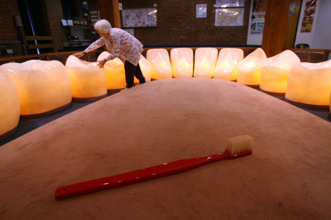 Dental educator Mary Steck arranges the oversize teeth after a demonstration at the St. Louis Dental Museum in St. Louis on February 28, 2007. As the month of February comes to an end so does Childrens Dental Health Month and the amount of tours to the museum. Steck says February usually has up to 10 groups of children a day learning the proper way to brush, floss and care for your teeth. Steck belives this display of 16 lower oversized teeth to be the only one in the country. (UPI Photo/Bill Greenblatt)