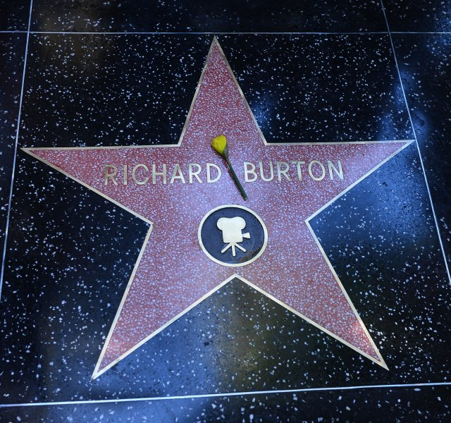 A yellow rose is lies atop Richard Burton's star during an unveiling ceremony, honoring the Academy Award-winning actor with the 2,491st star on the Hollywood Walk of Fame in Los Angeles on March1, 2013. Burton's star is next to Elizabeth Taylor's, who starred with Burton in Cleopatra. UPI/Jim Ruymen
