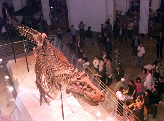 CHI2000051802 - 18 MAY 2000 - CHICAGO, ILLINOIS, USA: Patrons get a look at Sue the Tyrannosaurus Rex at the Field Museum in Chicago, Thursday, May 18, 2000. Sue fp/Frank Polich. UPI