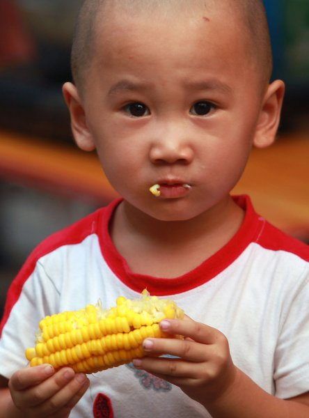 A Chinese boy eats corn in Beijing on August 20, 2013. Despite China's reputation for being a country that mainly subsists on rice and noodles, corn is also one of the top grains, or agricultural staples, consumed across the country. UPI/Stephen Shaver