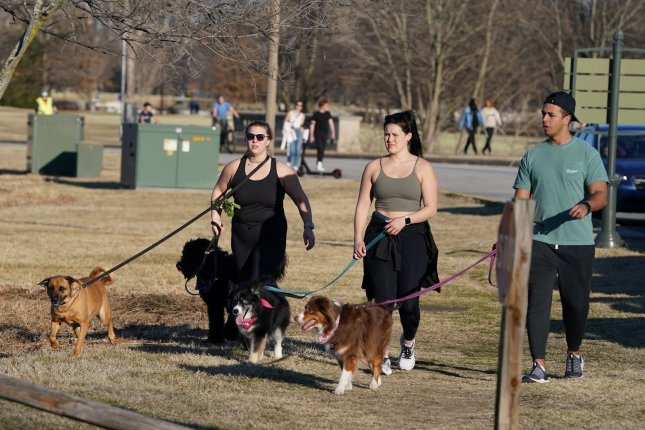 Dog owners stroll through Forest Park as temperatures reach 71 degrees Wednesday in St. Louis. Photo by Bill Greenblatt/UPI