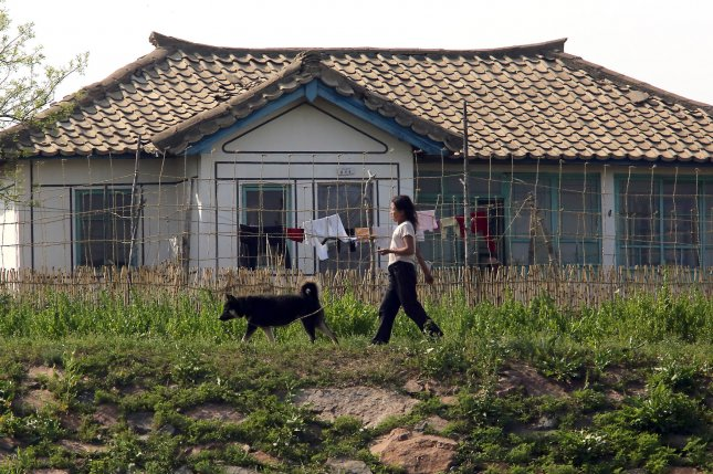A North Korean woman walks her dog in a small village near the North Korean city Sinuiju. More than 1,000 North Koreans defected to the South in 2016, according to the South Korean government. File Photo by Stephen Shaver/UPI
