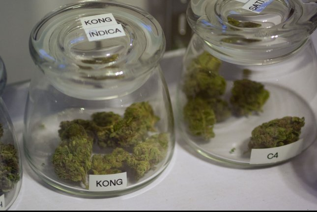Researchers linked cannabis reception to mitochondria in neurons, suggesting potential problems. File photo by Gary C. Caskey/UPI