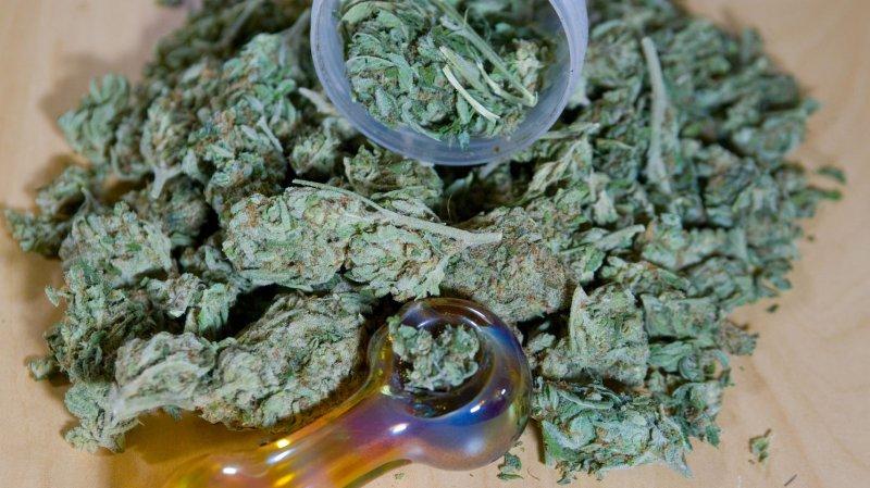 Uruguay House votes to legalize marijuana. (File/UPI /Jim Bryant)