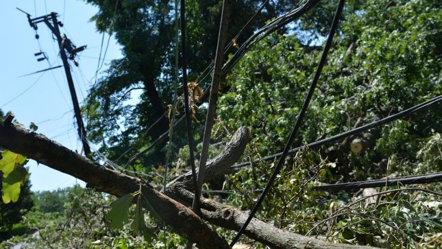 A mangled mess of tree limbs and wires are seen in the aftermath of last week's storms, July 2, 2012 in Takoma Park, Maryland. Power still remains out for hundreds of thousands of customers in the Washington region. UPI/Kevin Dietsch