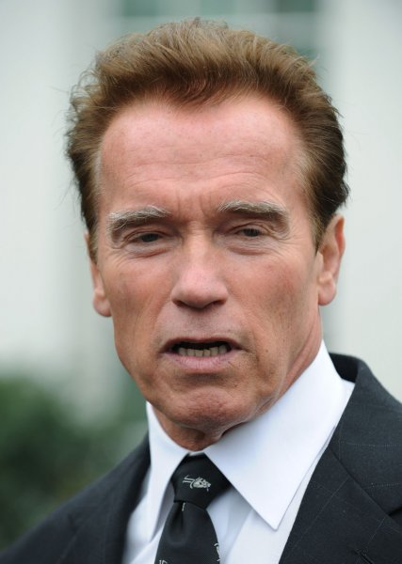 California Gov. Arnold Schwarzenegger at the White House, Feb. 22, 2010. UPI/Alexis C. Glenn.