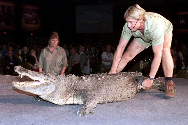 Crocodile Hunter Steve Irwin wrestles a crocodile at an MGM luncheon at ShoWest 2002 in Las Vegas on March 6, 2002. The conservationist died September 4, 2006. File Photo by Roger Williams/UPI