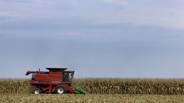 The drought has taken a major toll on the quality and quantity of the corn and soybean crops. (UPI Photo/Brian Kersey)