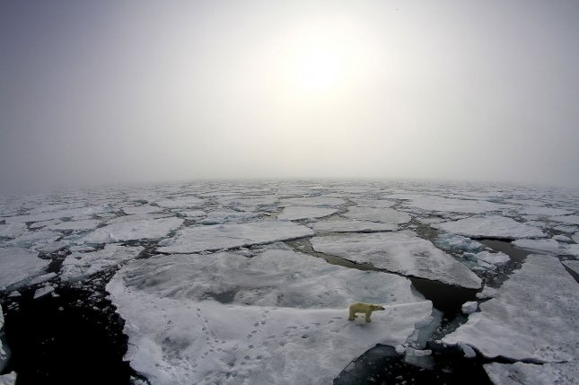 A polar bear wanders on thinning sea ice in the Arctic on August 8, 2017. A new survey Wednesday reported that 73 percent of Americans believe climate change is a result of human activity, a record statistic. File Photo courtesy NASA/Norwegian Polar Institute/UPI