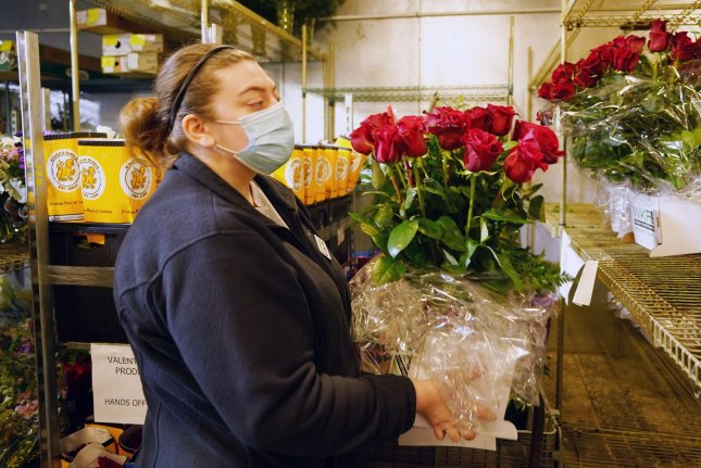 Masked flower arranger Stephanie Consolino is seen placing red roses for Valentines Day into a cooler at Walter Knoll Florists in St. Louis, Mo., on Tuesday. Photo by Bill Greenblatt/UPI