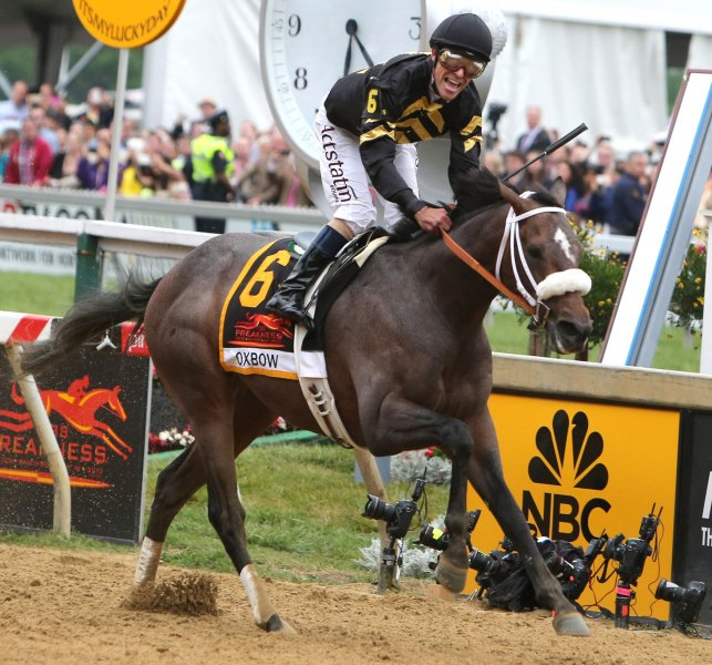 Oxbow, Gary Stevens up, wins the 138th Preakness Stakes at Pimlico Race Course on May 18, 2013 in Baltimore, Maryland. UPI/Mark Abraham