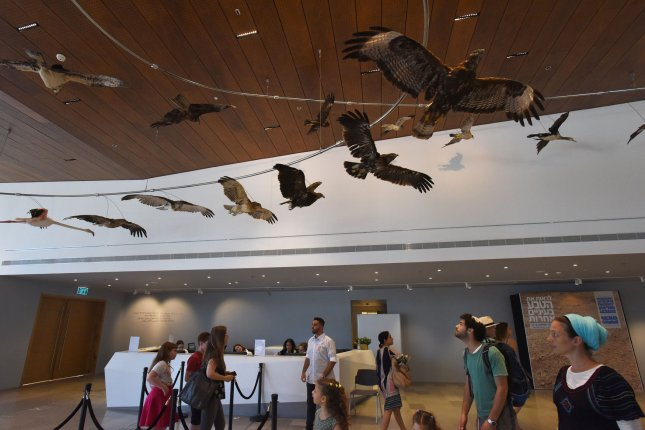 Visitors look at stuffed birds on display in the newly opened Steinhardt Museum of Natural History at Tel Aviv University on Tuesday. Photo by Debbie Hill/UPI