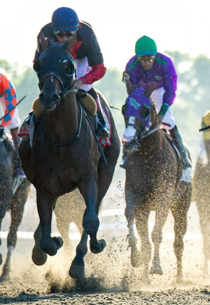Tonalist (left) wins the 146th Belmont Stakes as California Chrome (right) finishes fourth at Belmont Park in Elmont, New York, June 7, 2014. Belmont favorite California Chrome finished fourth. UPI/Kevin Dietsch