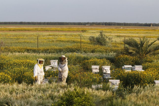New research shows non-bee pollinators are responsible for between 25 and 50 percent of flower visits for some crops. File Photo by Ismael Mohamad/UPI