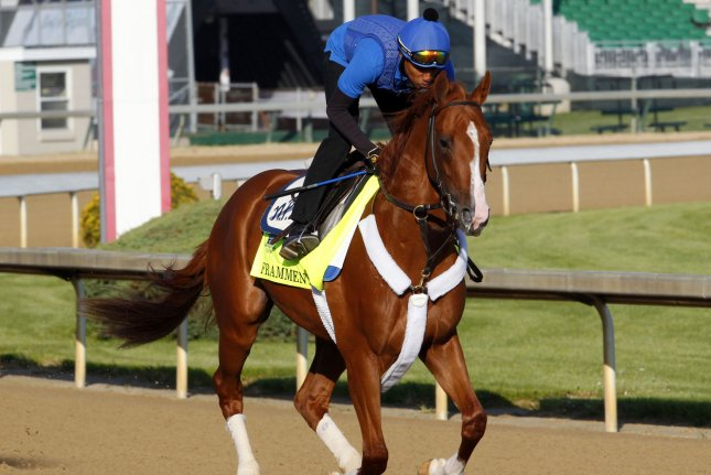 Kentucky Derby hopeful Frammento gallops on the track during morning workouts at Churchill Downs in Louisville, Kentucky, April 29, 2015. Trainers are preparing their horses to run in the 141st running of the Kentucky Derby to be held at Churchill Downs on May 2. Photo by John Sommers II/UPI