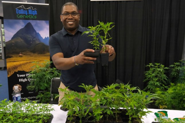 Kilby Williamson from Valley High Genetics shows his latest Hemp plants at the USA CBD Expo at the Miami Beach Convention Center in Miami Beach, Fla., on August 3.  A preliminary study suggests prescription-grade CBD may help control hard-to-treat seizures caused by a rare genetic disorder. File Photo by Gary I Rothstein/UPI