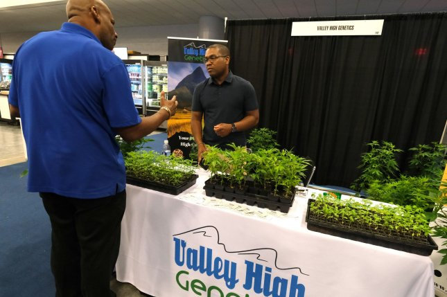 Kilby Williamson from Valley High Genetics shows his latest Hemp plants at the USA CBD Expo at the Miami Beach Convention Center on Saturday. Photo by Gary I Rothstein/UPI