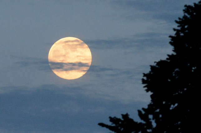 Earth's gravitational pull stretches moon surface - UPI com