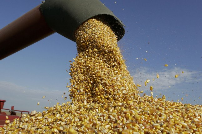 Corn prices were hit particularly hard by the coronavirus pandemic with fewer people driving, reducing the demand for corn-made ethanol. File Photo by Brian Kersey/UPI