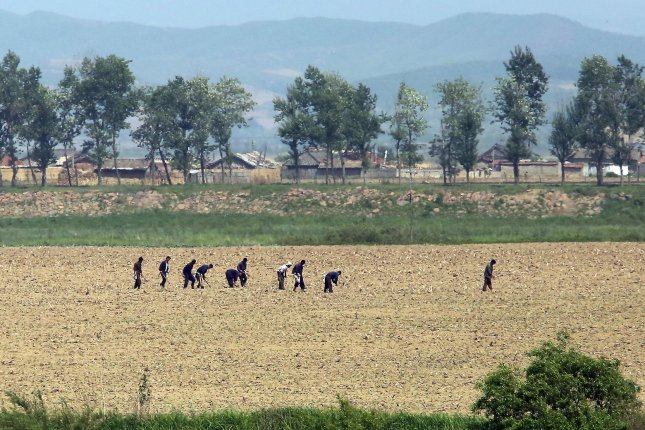 North Koreans work in the fields near the North Korean city Sinuiju, across the Yalu River from Dandong, China's largest border city with North Korea. North Korea drastically reduced grain imports from China in 2015. Photo by Stephen Shaver/UPI
