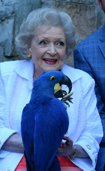 Betty White holds a Hyacinth Macaw as she attends the 45th annual Beastly Ball at the Greater Los Angeles Zoo on June 20, 2015. The actress turned 95 Tuesday. File Photo by Jim Ruymen/UPI