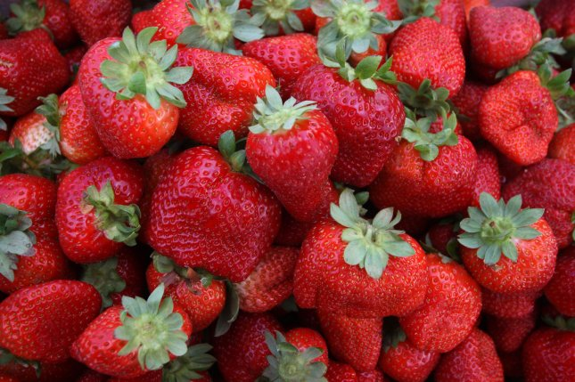 Strawberries top this year's Environmental Working Group dirty dozen list of the produce with the highest levels of pesticides. File Photo by Ismael Mohamad/UPI